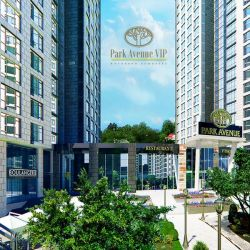 Park Avenue VIP и BlankNote: сотрудничество без сучка и задоринки