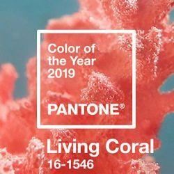 Живой Коралл: главный цвет 2019 года